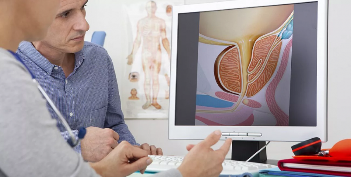 УЗИ внутренних органов мочеполовой системы